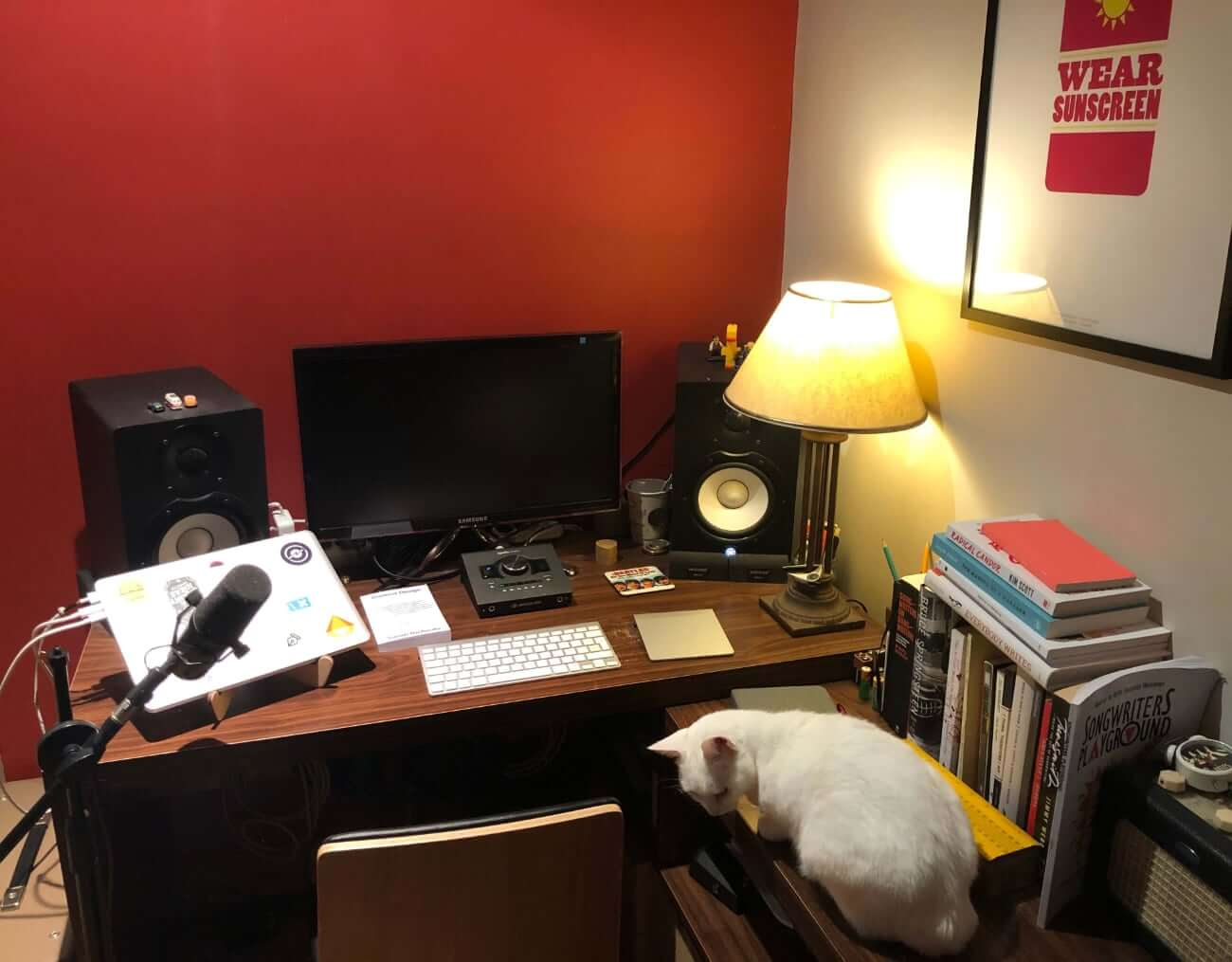 Image of Daniel's work from home setup, featuring Mollie the cat