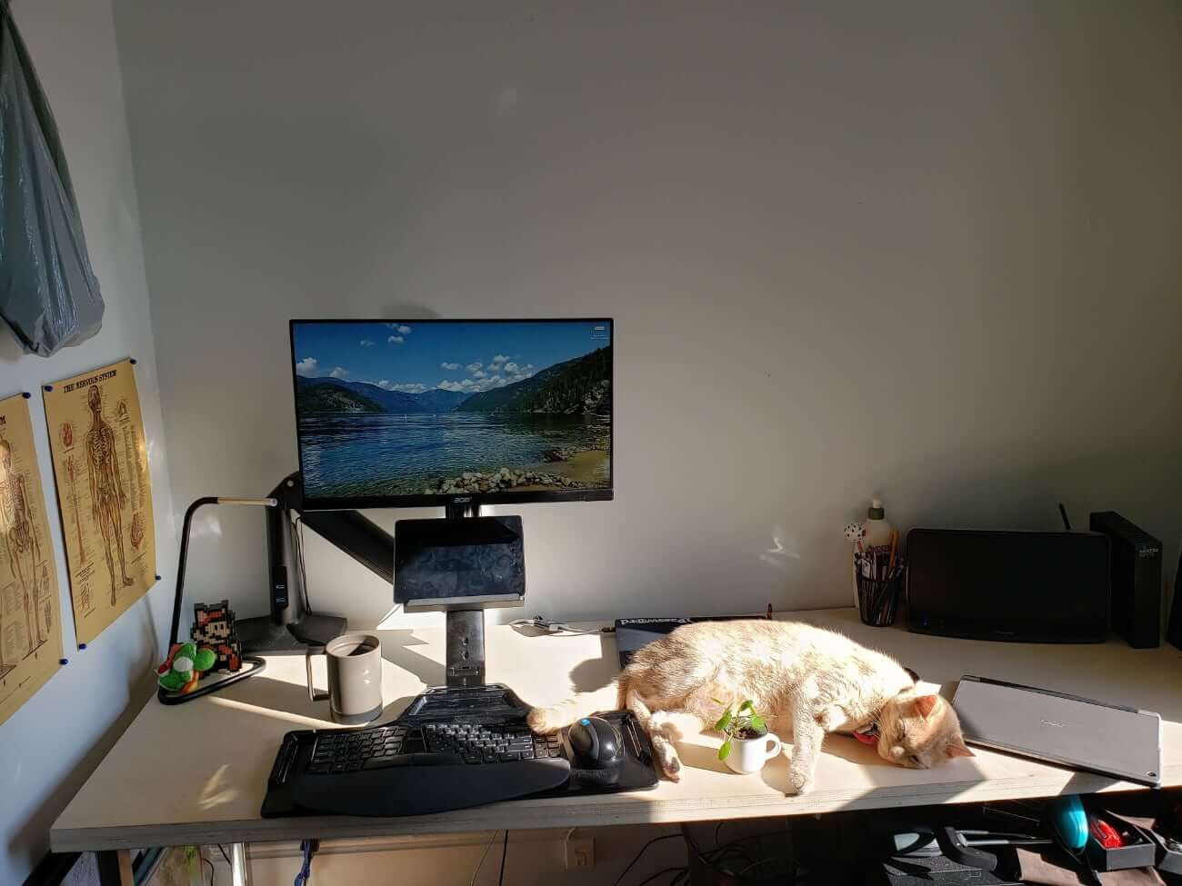 Image of Dayton's work from home setup